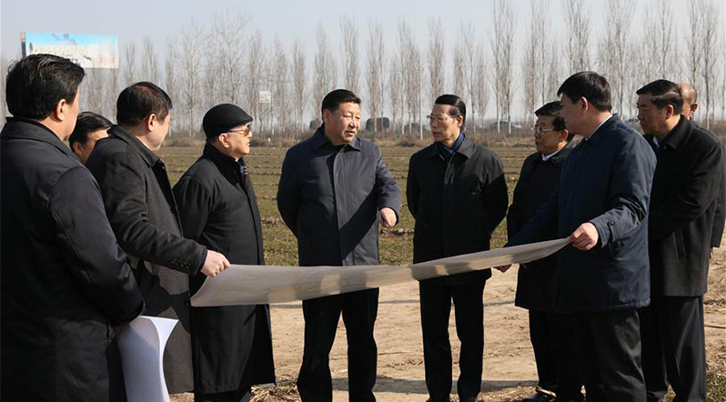 Procedures unveiled for birth of Xiongan New Area