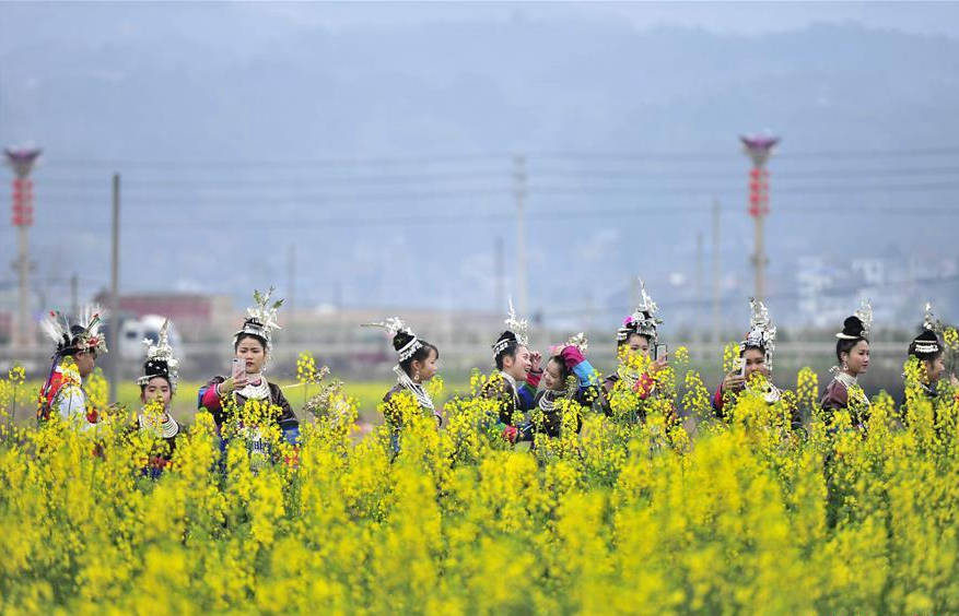 Flowers blossom across China during Spring Festival