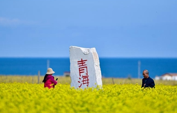 Tourists enjoy scenery along Qinghai Lake during Mid-Autumn Festival holiday