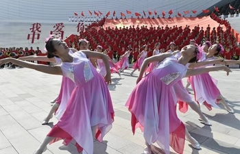 Patriotic theme flash mob held in Langfang, N China's Hebei