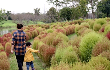 Tourists visit ecological park in Jinshan District, E China's Shanghai