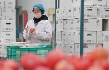 Workshops resume production to ensure stable income of impoverished people in Hebei