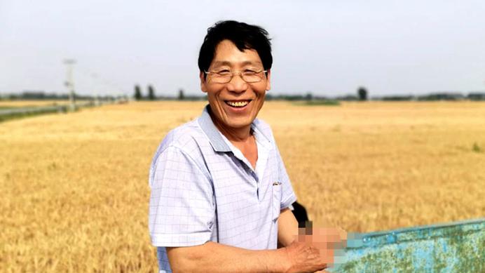 雄安新区:又是一年麦收忙 麦浪滚滚穗飘香