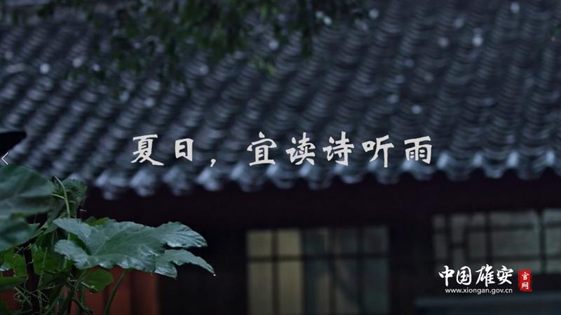 夏日,宜读诗听雨