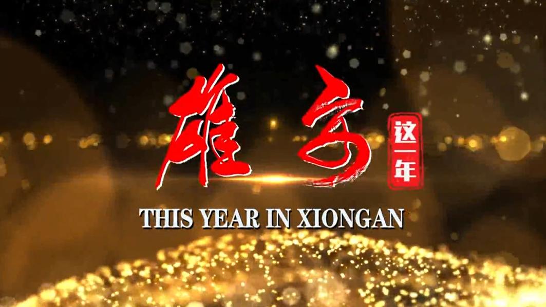 雄安这一年