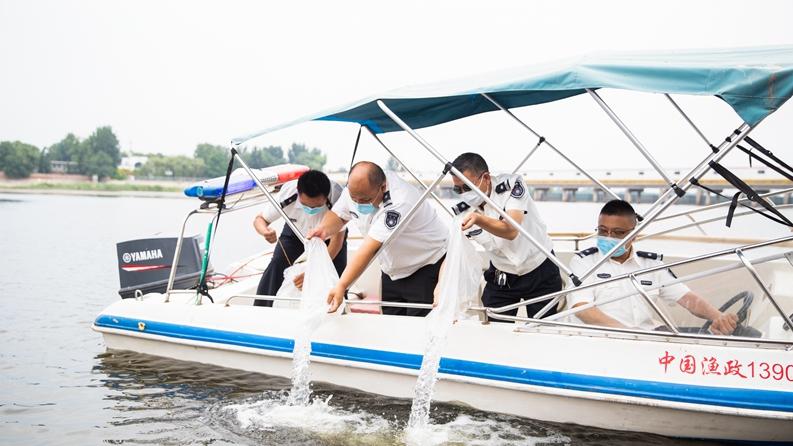 河北雄安新区29日举办鱼类公益增殖放流活动