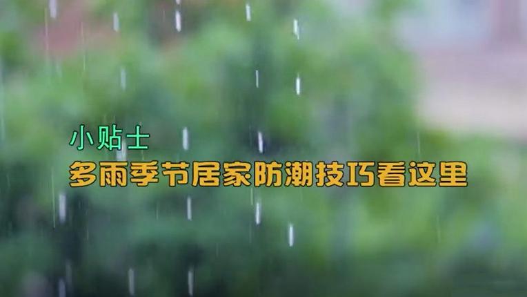 小贴士丨多雨季节居家防潮技巧看这里