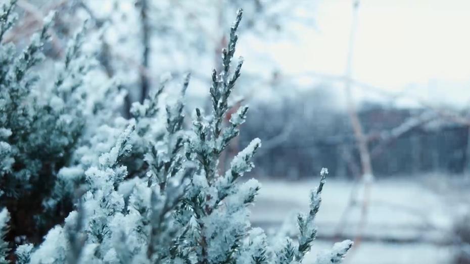 冬至 冬藏之气 至此而极