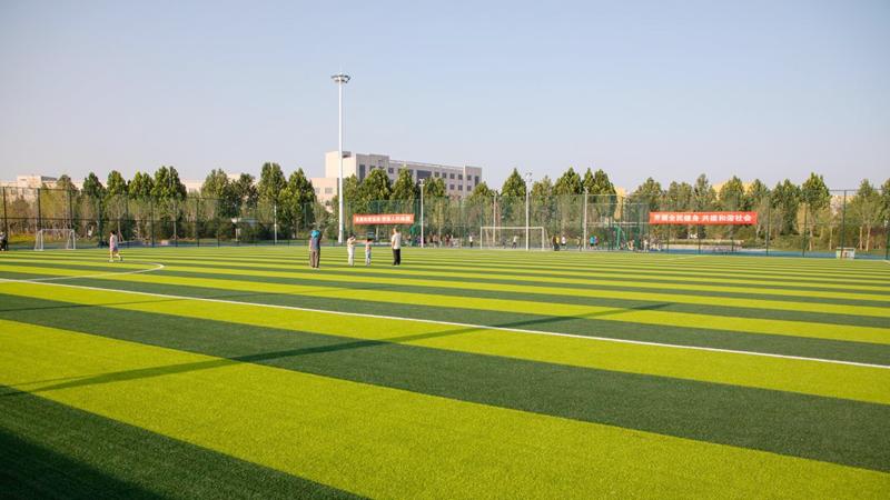 雄安新区一座高标准体育公园投入使用