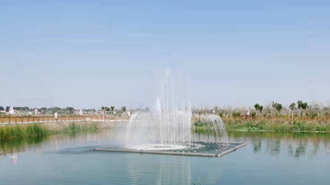 尾水倒排+生态公园 雄安新区这工程获群众点赞