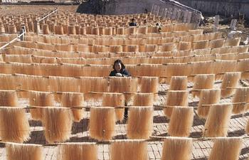 Villagers dry vermicelli to cope with market demand in China's Hebei
