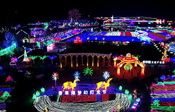 "Light show with theme ""Silk Road"" held in Handan, China's Hebei"