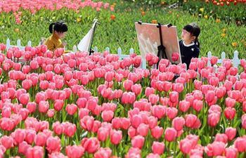 In pics: The color of spring