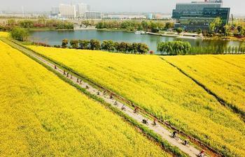 In pics: colorful spring scenery across China