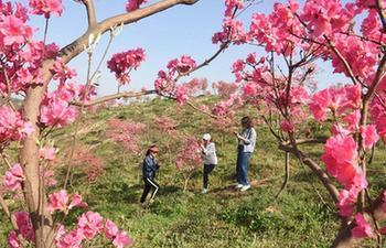 People enjoy spring view across China