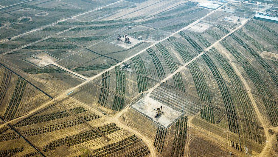 """雄安新区打造""""千年秀林"""" 加强生态建设"""