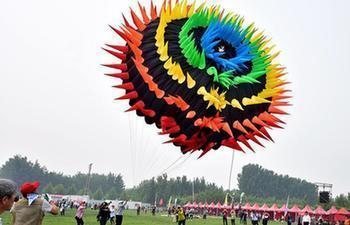 National kite championship held in Langfang, N China's Hebei