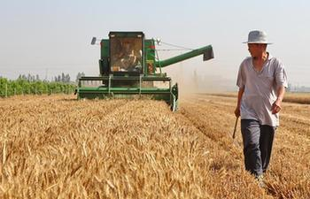 1.1 mln farming machines put into harvesting, sowing activities in China's Hebei