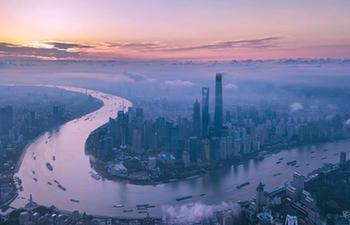 Pudong spearheads China's reform and development
