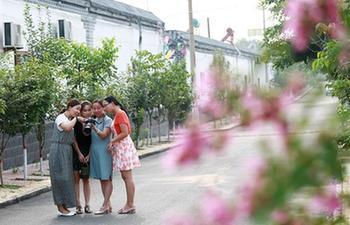 Tourists visit Neiqiu County of China's Hebei