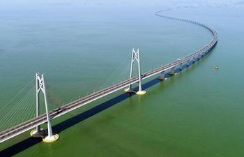 Xinhua Headlines: From plans to actions, Guangdong-Hong Kong-Macao Greater Bay Area development proceeds