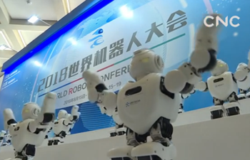China's robotics industry growing fast