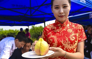 Peach contest held to boost agriculture development in N China's Hebei