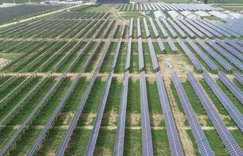 Photovoltaic power plants established to help people improve income in China's Hebei