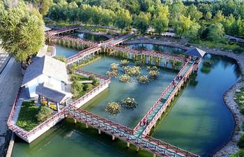 Ecological park constructed on site of waste land in China's Hebei