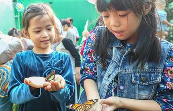 First Int'l Insect Art Science Fair held in Beijing