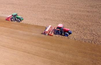 In pics: farm work done in north China's Hebei