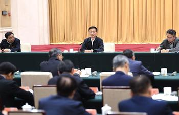 Chinese vice premier stresses clean energy use for winter heating