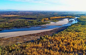Aerial view of autumn scenery of Luanhe River in N China's Hebei
